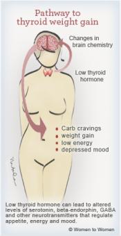 thyroid-weightgain